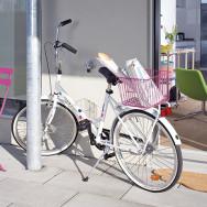 Fahrrad Rice